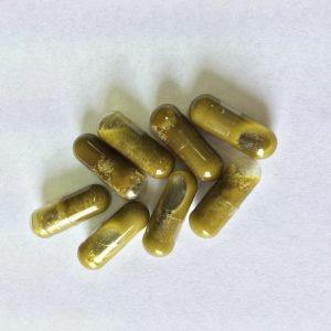 Whole Plant Hemp Capsules (15 Mg)