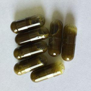 Whole Plant Hemp Capsules (40 Mg)